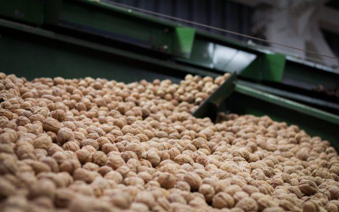 ba org walnuts+